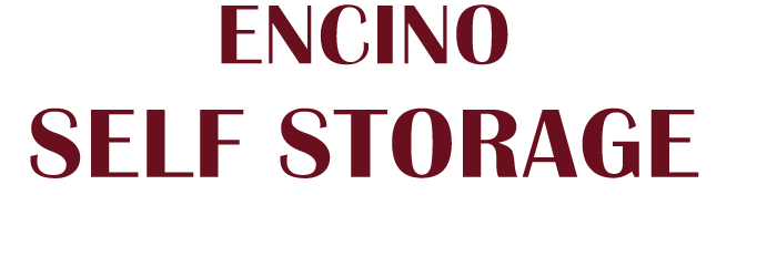 Encino Self Storage logo